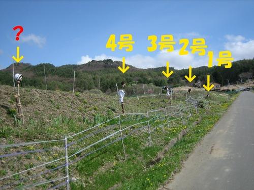 IMG_3519ブログ.jpg