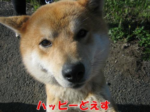 IMG_4299ブログ.jpg