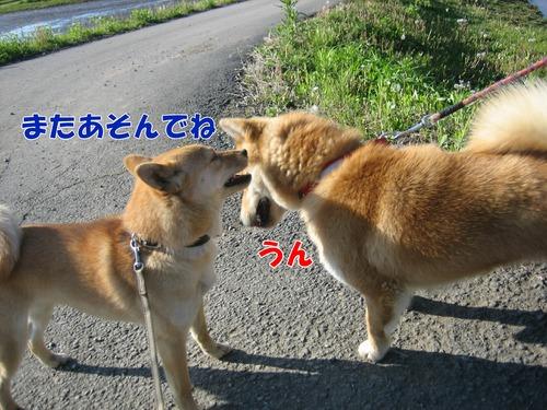 IMG_4314ブログ.jpg