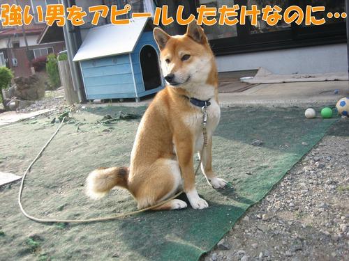 IMG_4323ブログ.jpg