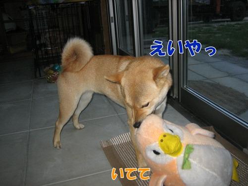 IMG_4753ブログ.jpg