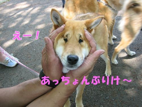 IMG_4858buro.jpg