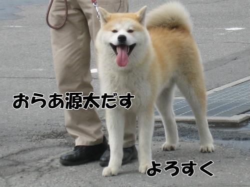 IMG_5010ブ.jpg