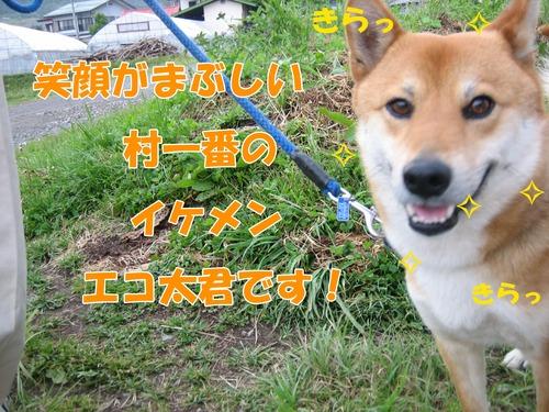 IMG_5039ブ.jpg