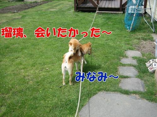 IMG_5098ブ.jpg
