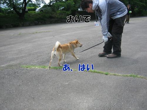 IMG_5214ブ.jpg