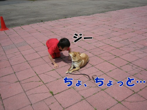 IMG_5239ブ.jpg