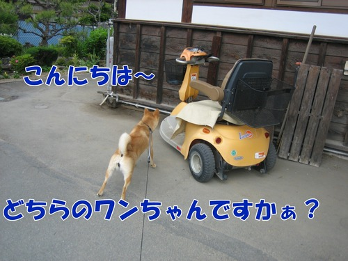 IMG_5268ブ.jpg