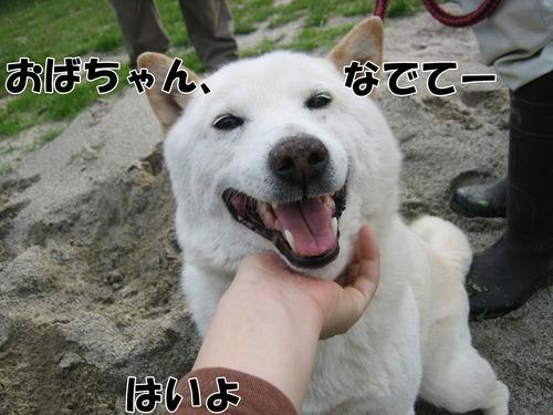 IMG_5501ブ.jpg