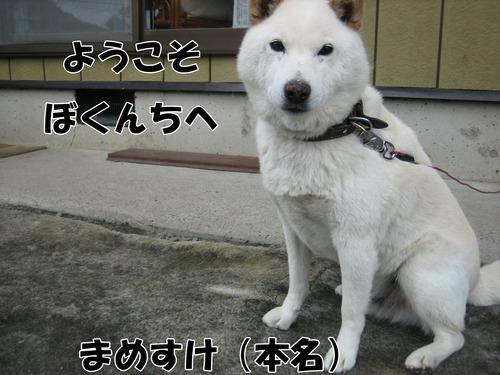 IMG_5574ブ.jpg