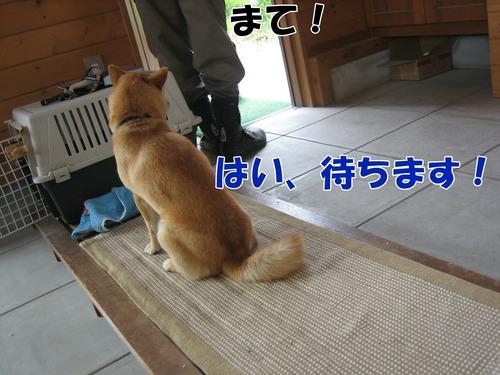 IMG_5759ブ.jpg
