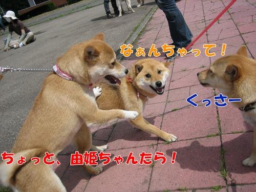IMG_5788ぶ.jpg