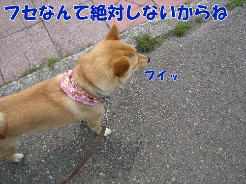 IMG_5803ブ.jpg