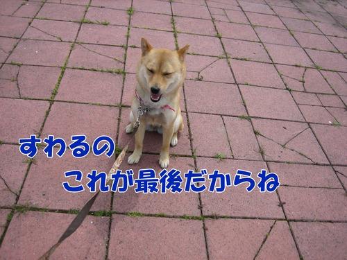 IMG_5808ブ.jpg