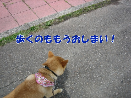 IMG_5810ブ.jpg