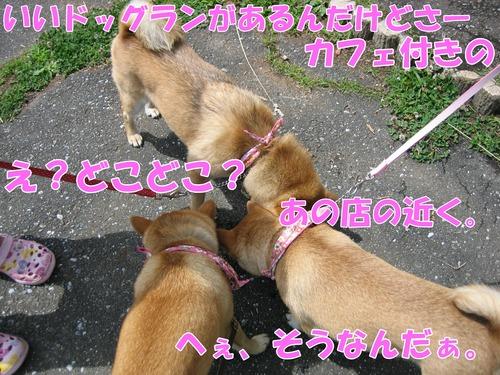 IMG_5822ブ.jpg