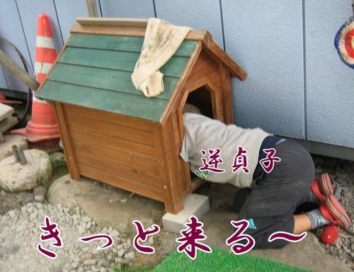 IMG_5826ぶ.jpg