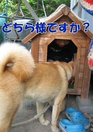 IMG_5829ぶ.jpg