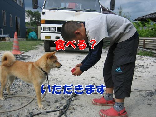 IMG_5842ブ.jpg