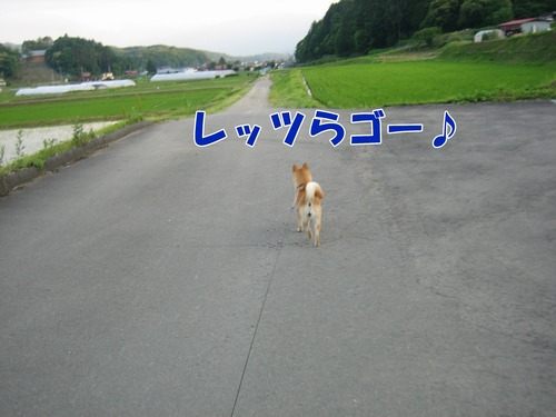 IMG_5912ブ.jpg