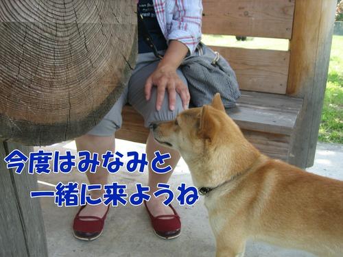 IMG_6004ぶ.jpg