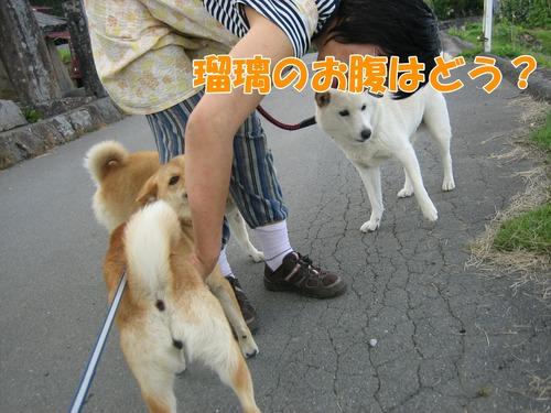 IMG_6075ぶ.jpg