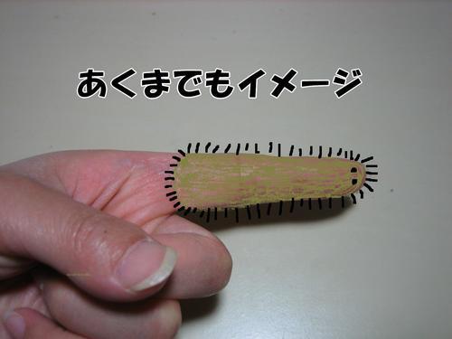 IMG_6090ぶ.jpg