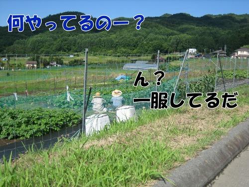 IMG_6106ブ.jpg