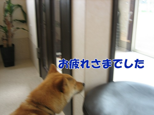 IMG_6173ブ.jpg
