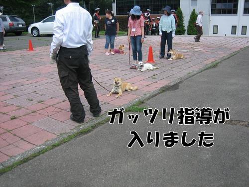 IMG_6232ブ.jpg