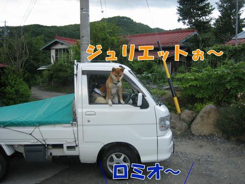 IMG_6355ブ.jpg