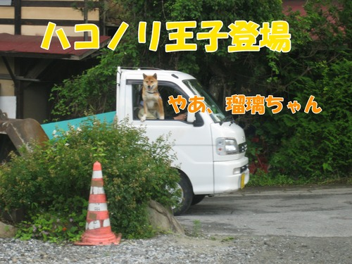 IMG_6363ブ.jpg