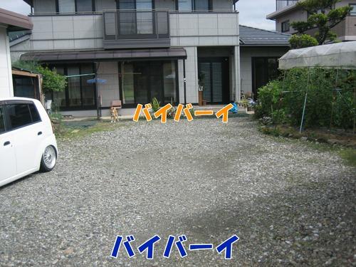 IMG_6389ブ.jpg