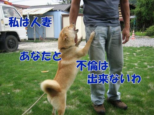 IMG_6478ブ.jpg