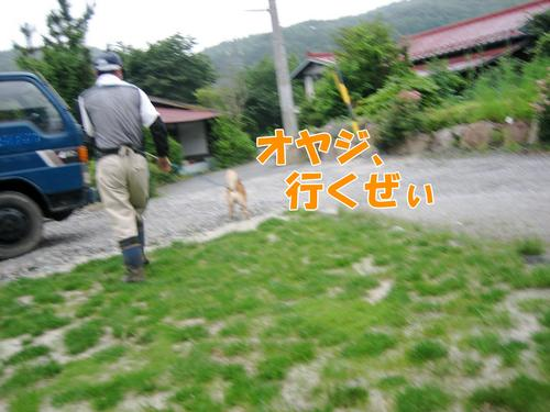 IMG_6498ブ.jpg