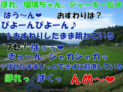 IMG_6644ブ.jpg