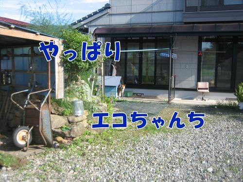 IMG_6647ブ.jpg