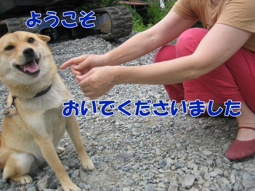 IMG_6680ブ.jpg