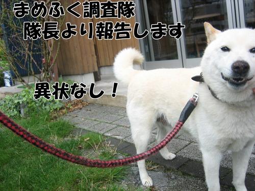 IMG_6816ブ.jpg