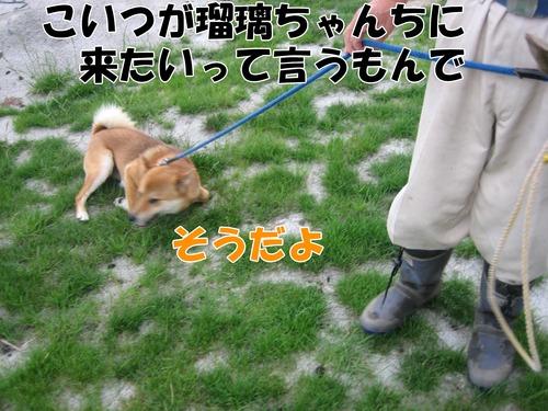 IMG_6850ブ.jpg