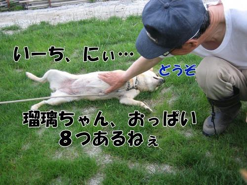 IMG_6852ブ.jpg