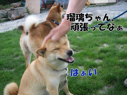 IMG_6854ブ.jpg