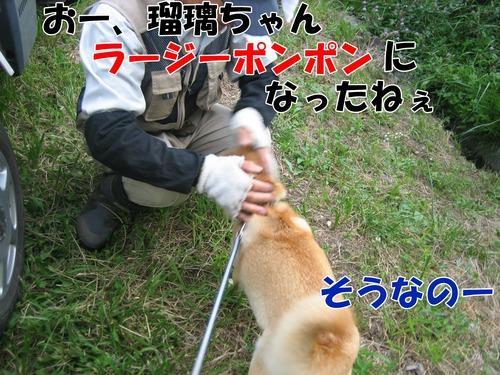 IMG_7102ブ.jpg