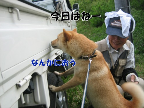 IMG_7103ブ.jpg