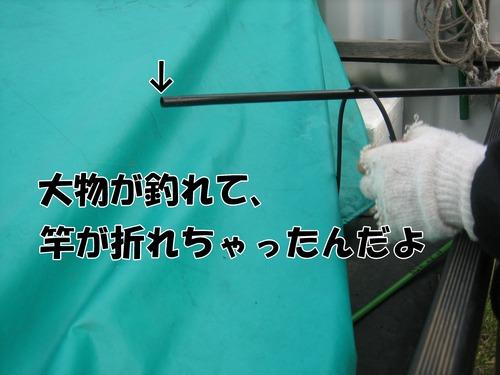 IMG_7104ブ.jpg