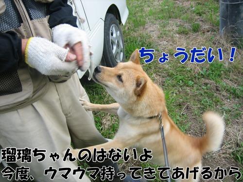 IMG_7108ブ.jpg