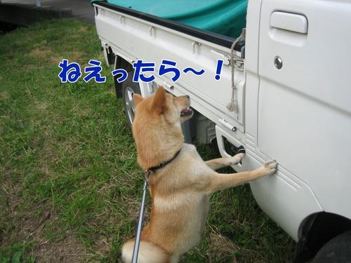 IMG_7109ブ.jpg