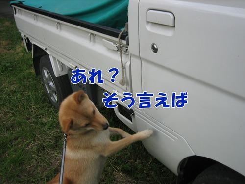 IMG_7110ブ.jpg