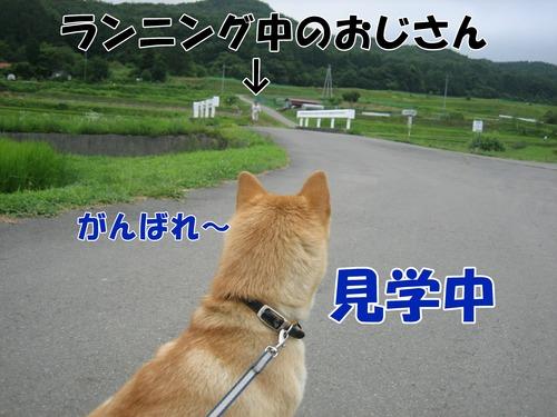 IMG_7292ブ.jpg