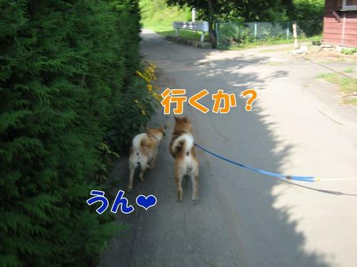 IMG_7329ブ.jpg